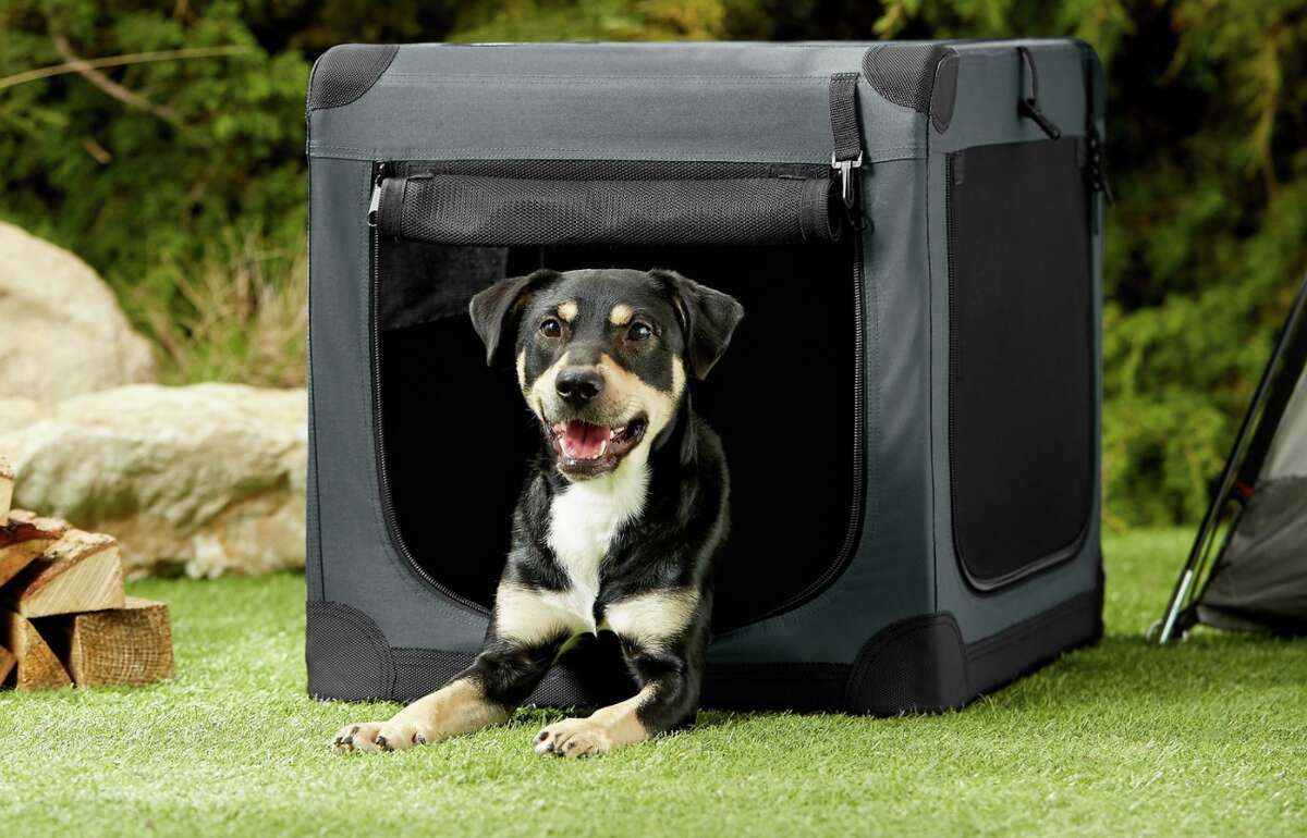 Save up to 25% on dog beds, crates, and gear at Chewy