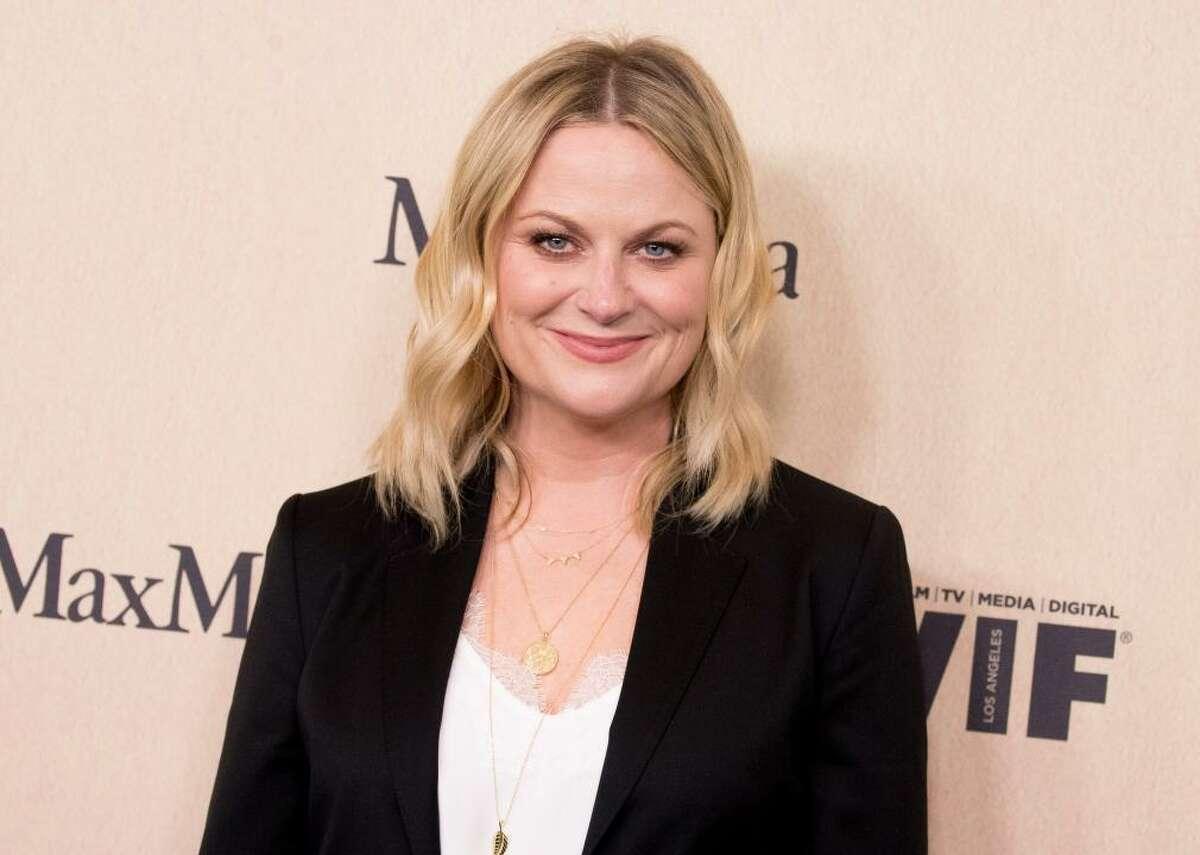Amy Poehler: Birthday singer Comedian Amy Poehler's first job in New York was serving ice cream to