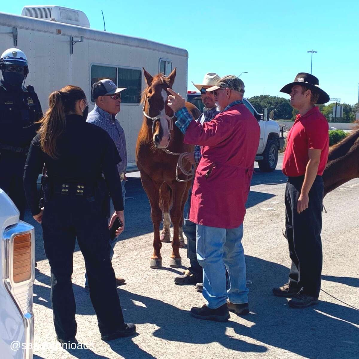 The city's animal care services rescued two horses that were slammed by an 18-wheeler while in a trailer they were being transported in.