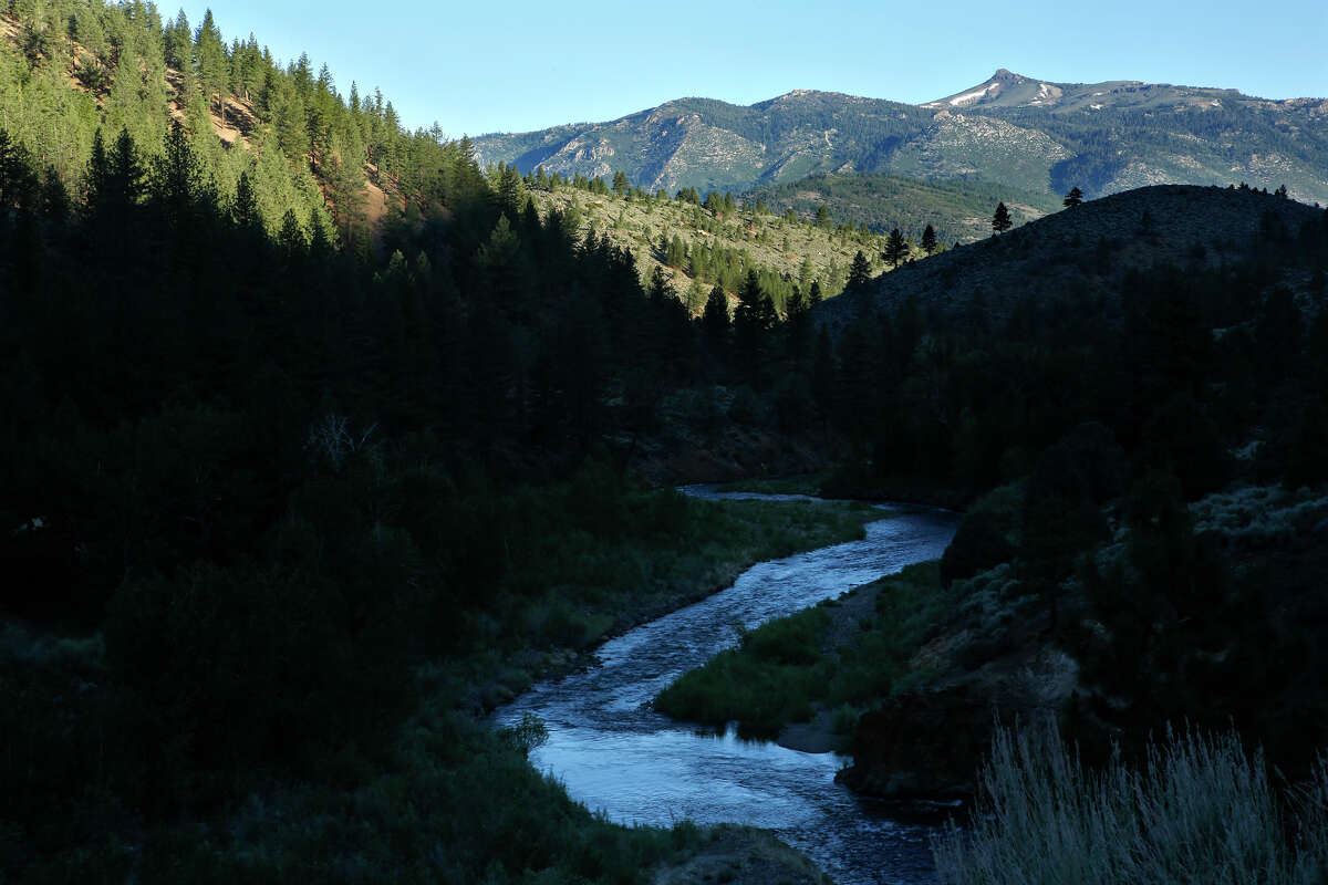 The East Carson River, flowing through Markleeville in Alpine County on June 13, 2014.