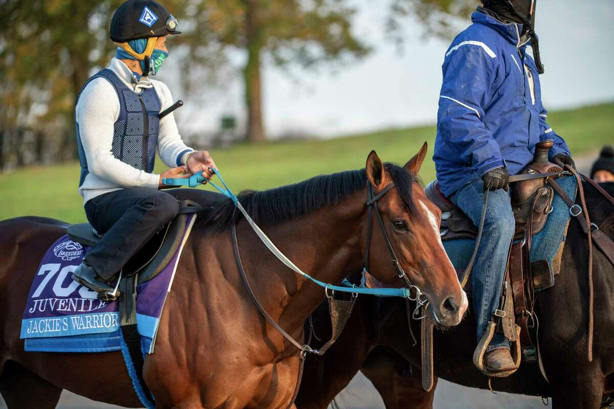 Assistant trainer for Steven M. Asmussen, Scott Blasi takes Breeders' Cup entrant Jackie's Warrior to the track this morning at Keeneland Race Course Sunday, Nov. 1, 2020, in Lexington, Ky. (Skip Dickstein / Special to the Times Union)