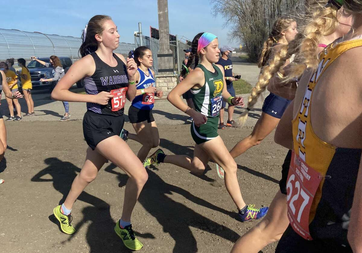 Dow High's Katie Watkins (rainbow headband) competes in the Division 1 cross country state final Friday, Nov. 6, 2020, at Michigan International Speedway in Brooklyn.