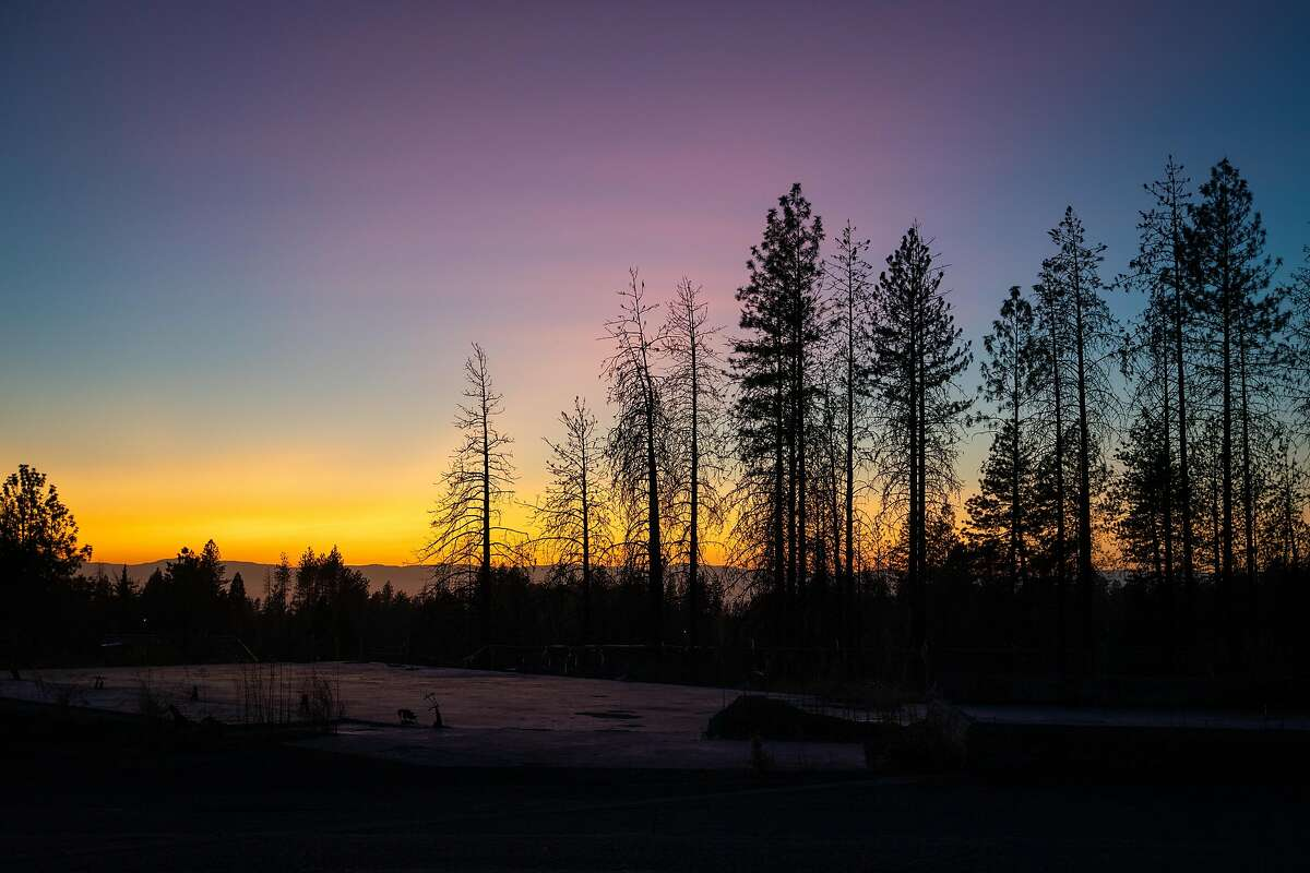 Trees are silhouetted at sunset on on an empty lot near Skyway Road in Paradise.