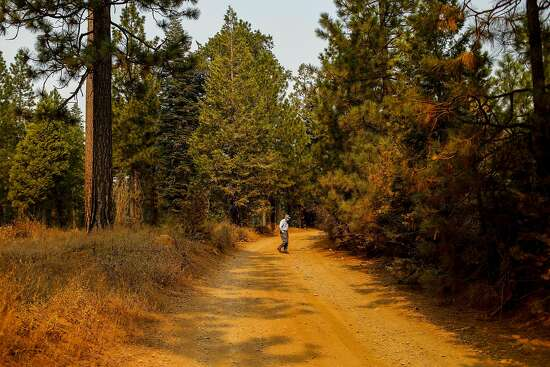 Doug Laurie gives a tour of Ponderosa Way which was once used as a firebreak on Tuesday, Sept. 29, 2020 in Butte County, California. Doug is a Butte County resident who has long been lobbying to revitalize the roads to use as firebreaks.