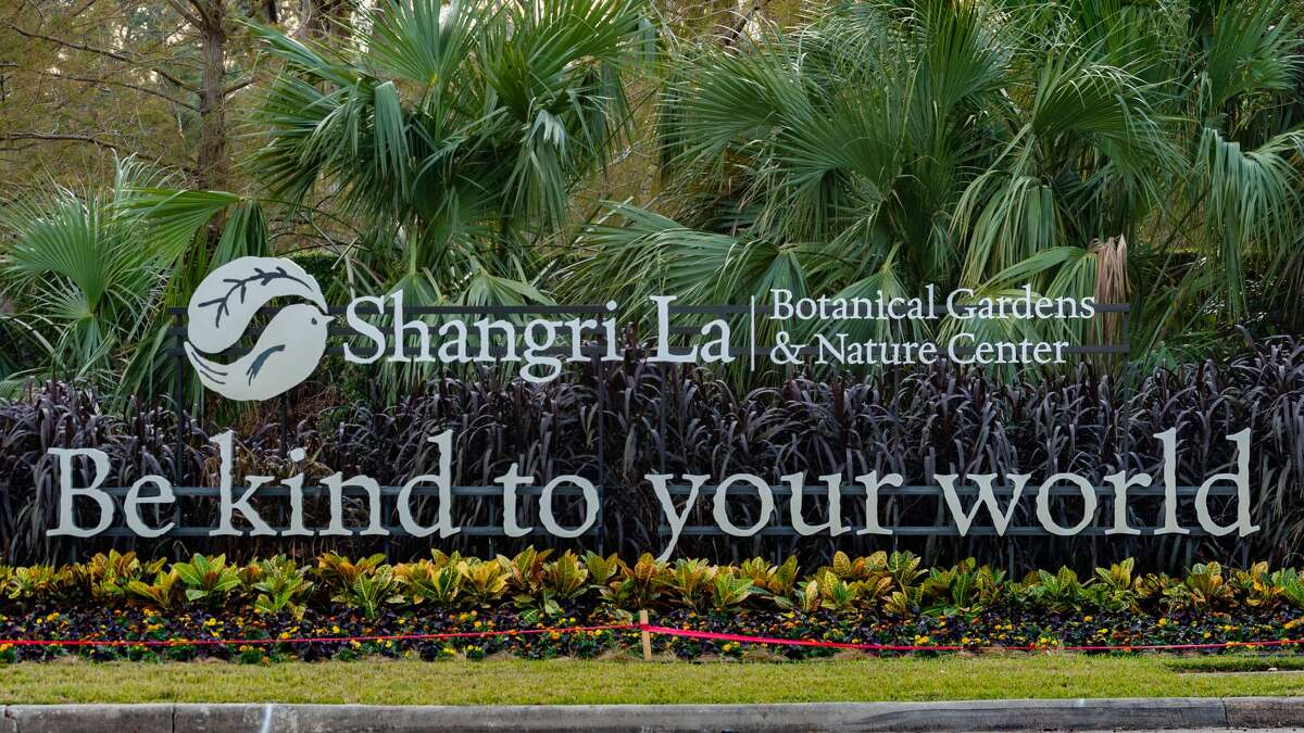 Shangri La Botanical Gardens and Nature Center in Orange is scheduled to open to the public on November 18th after being closed due to Covid-19 and damage from Hurricane Laura. Photo made on November 6, 2020. Fran Ruchalski/The Enterprise