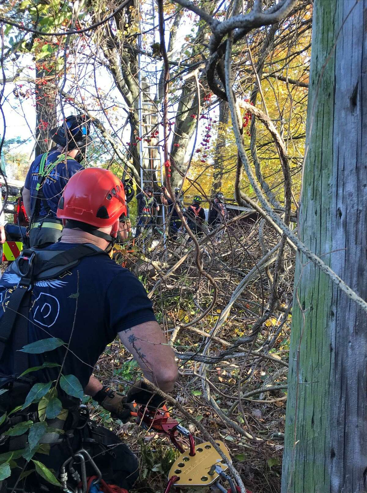 Bridgeport and Fairfield firefighters use rescue rope and rigging to lift heavy branch off the leg of a worker pinned in a tree high above Beacon View Drive Saturday, Nov. 7.
