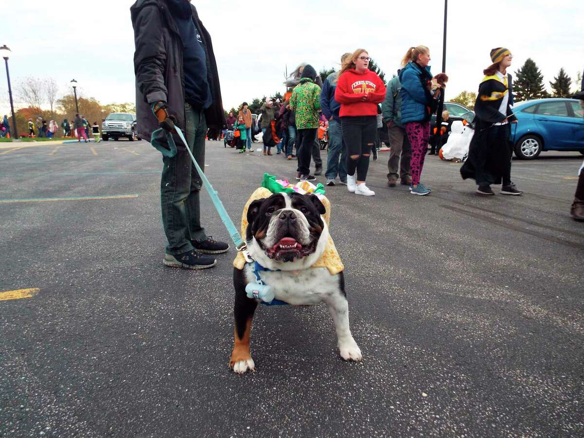 Even dogs got in the Halloween spirit at the Trunk or Treat event put on by Faith Covenant Church on Oct. 31. (Courtesy photo)
