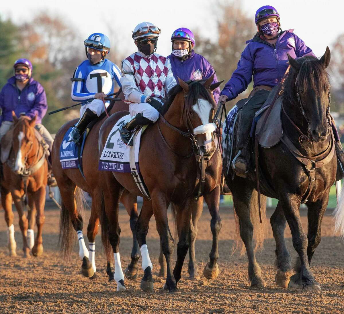 Tiz the Law walks in the post parade before Authentic with jockey John Velazquez wins the $6M Breeders?• Cup Classic G1 at Keeneland Race Course Saturday Nov. 7, 2020 in Lexington, KY. Tiz the Law was placed 6 Photo by Skip Dickstein/ Special to the Times Union