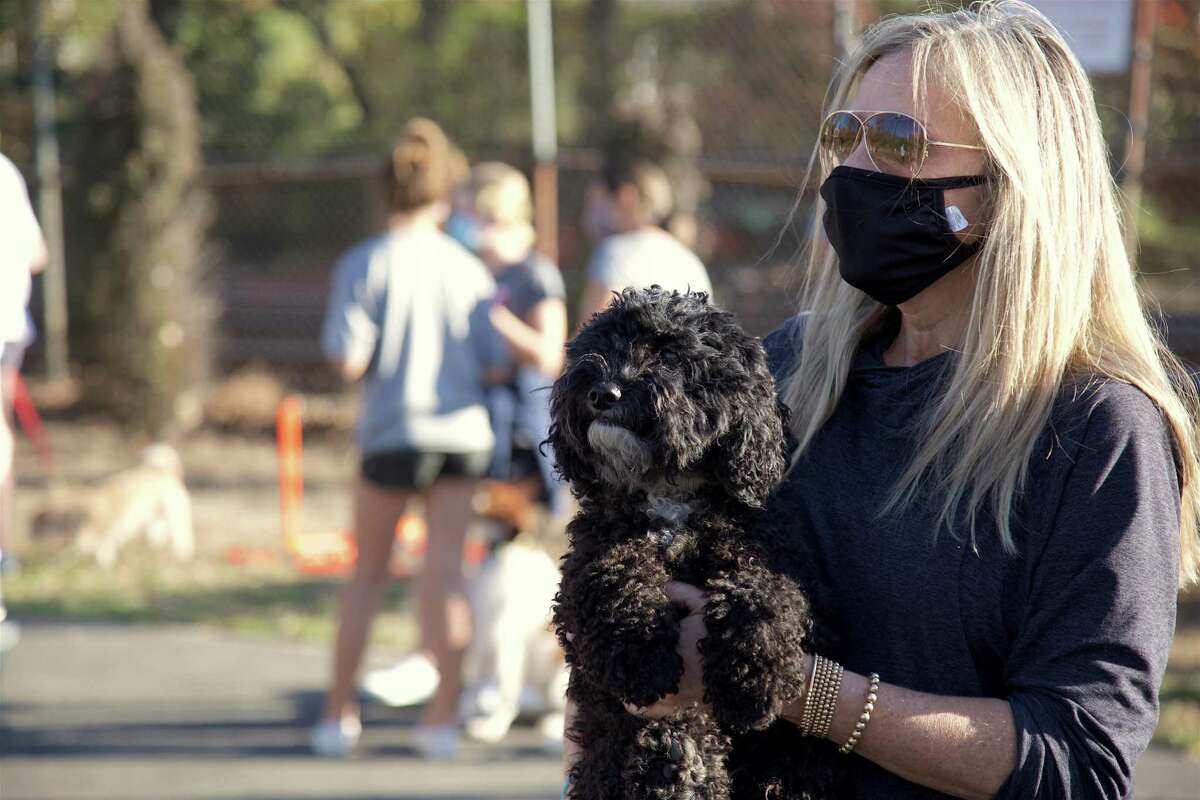 """Lisa Koorbusch of Darien and her dog Winnie make the scene at The Darien Depot's Dog Show on Sunday, Nov. 8, 2020. """"We thought a dog show would be really cool and appealing to a lot of families in Darien,"""" said Sophie Curtis, 14, who served as one of the judges. """"I think people like dogs because they're a great addition to a family,"""" she said, noting their therapeutic quality. Pandemic restrictions encouraged the group to keep enrollment to the first 20 dogs, which not only competed but spend the bulk of their time socializing with new dog friends and enjoying a sunny afternoon. """"I just think it's cool, especially during this time, to run an event like this for the community,"""" said volunteer Colby Dineen, 16. """"It's a great way to bring people together and to meet new people-socially distant, of course,"""" she said. Other local businesses that contributed to the event included Dog Gone Smart, Fish Bowl Pet Shop, The Pawprint Market, Pet Pantry Warehouse and Pet Valu."""