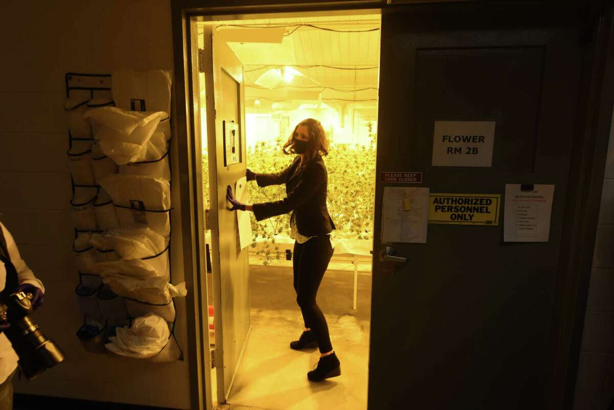 Kaitlyn Nedo, general manager of Vireo Health's Fulton County facility, closes the door to a flowering room where medical marijuana is grown inside the Vireo Health production facility on Monday, Nov. 9, 2020, in Johnstown, N.Y. (Will Waldron/Times Union)