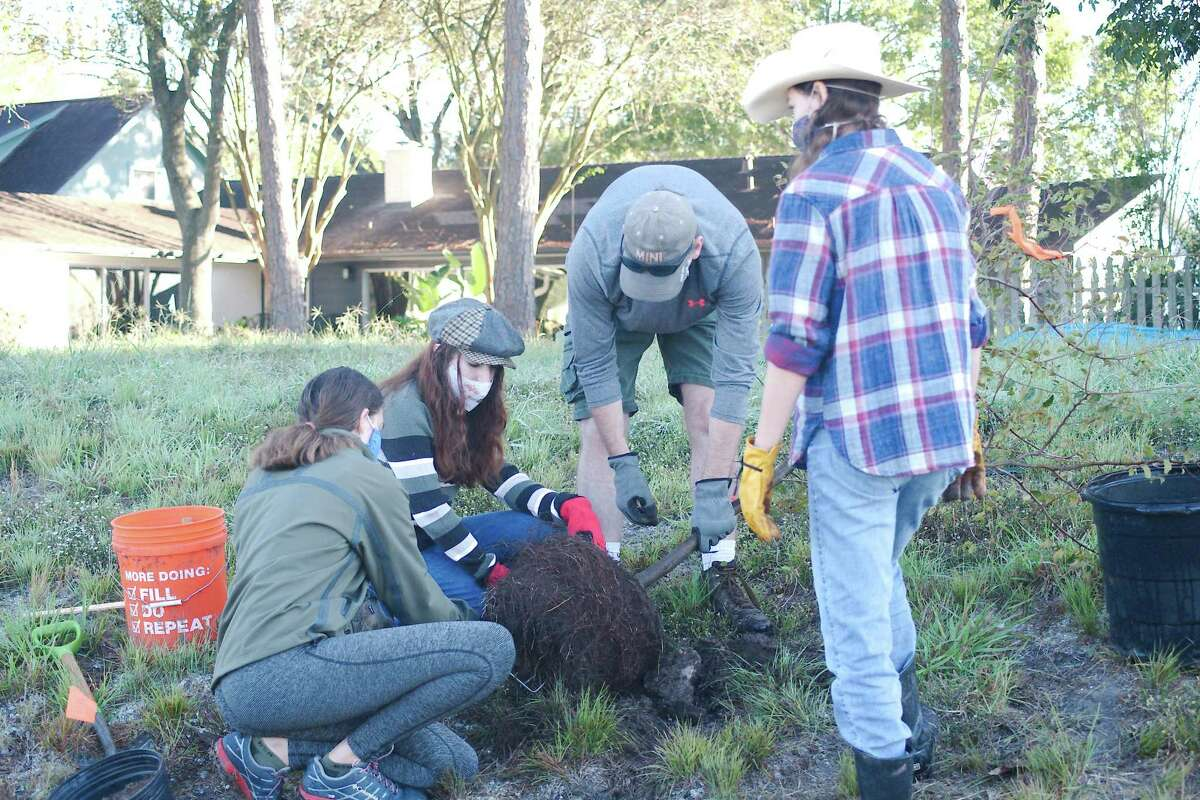 Scouts BSA Troop 596 members Ann Baumann, Katie Getteau, Chris Getteau and Samantha Reeve prepare to plant a tree during a recent Exploration Green planting event. Wetlands plantings sessions are scheduled this month and in December.