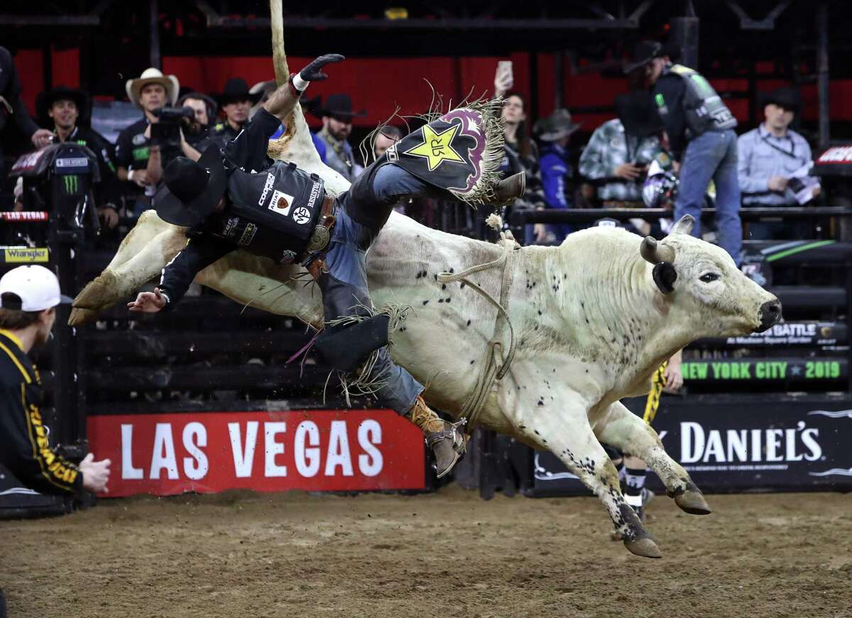 NEW YORK, NEW YORK - JANUARY 04: Cody Teel rides Switch Hitter during the PBR Unleash The Beast bull riding event at Madison Square Garden on January 04, 2019 in New York City. (Photo by Mike Lawrie/Getty Images)