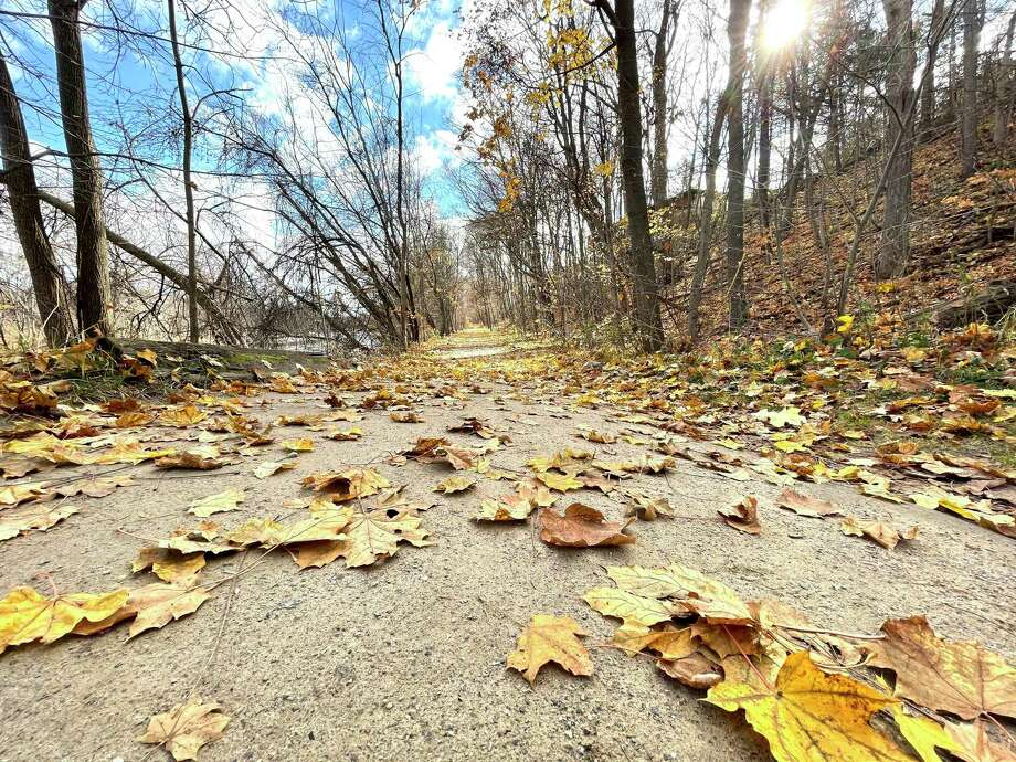 To start the second week of November, the Big Rapids area was welcomed with more warm weather on Monday. The trees are bare and the leaves have just a little bit of color left, as pictured here in this portion of the Riverwalk Trail in Big Rapids. Meteorologists predict temperatures in the upper 40s for the remainder of the week. (Pioneer photo/Bradley Massman)