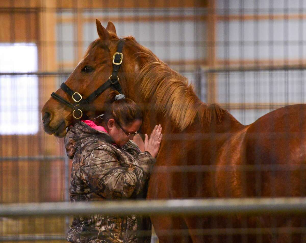 Veterans work with retired racehorses to overcome post-traumatic stress with Saratoga WarHorse.