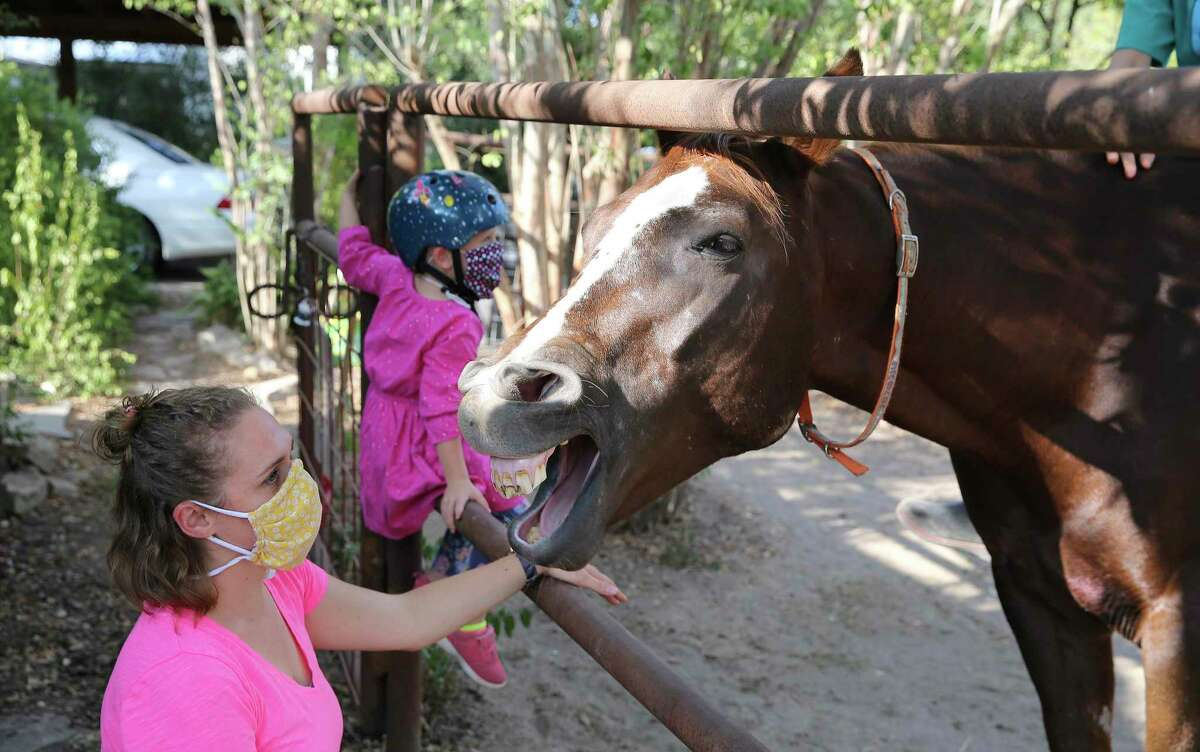 Horsepuppy, an Appaloosa horse that is the mascot of the Oak Park Northwood neighborhood, reacts in a humorous manner as Jenna Davis and her four-year-old daughter, Zia, 4, pay a recent visit.