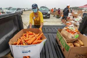 Vi Brooks loads carrots Tuesday morning, Nov. 10, 2020 into the bed of a pickup truck during a San Antonio Food Bank mega distribution event at Trader's Village. About 800 vehicles received food for about 3,300 people during the distribution.