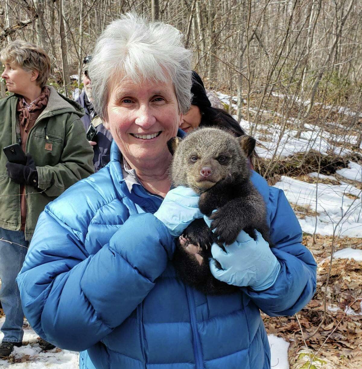 The David M. Hunt Library in Falls Village will host a Zoom event about Connecticut's wild turkey population with Master Conservationist Ginny Apple, at 3 p.m. Nov. 14. Attendees can register at HuntLibrary.org, on the Library's Facebook page, or by calling the library at 860-824-7424.