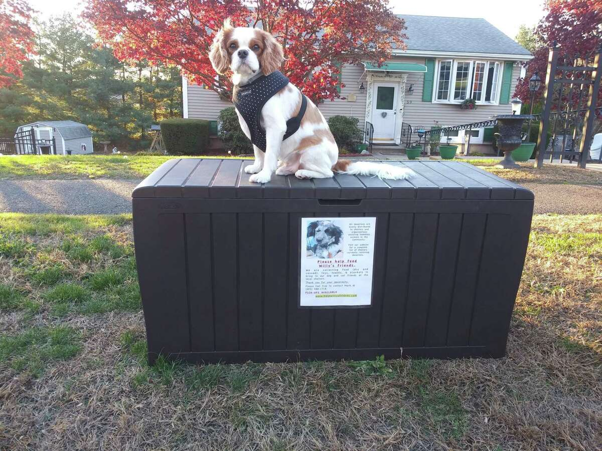 Lea Tomaszewski's dog Tippie rests on the pet food pantry drop-off bin at her 390 Highmeadow Road home in Middletown. She's currently taking donations in an effort to assista Help Willie's Friends of Durham.