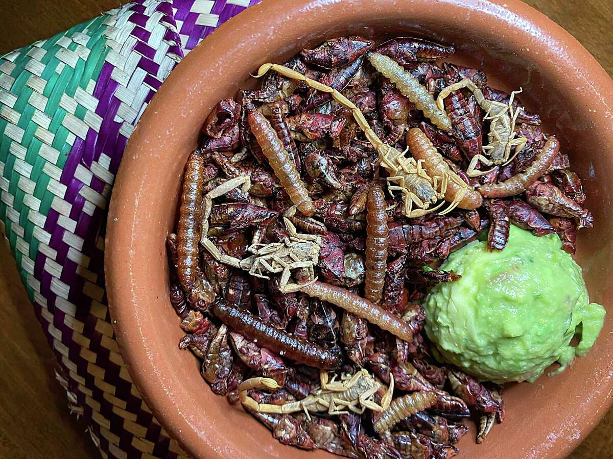 Bichos - salted and fried grasshoppers, worms and scorpions with guacamole and tortillas - is part of the menu at Cuishe Cocina Mexicana, a new upscale Mexican restaurant from the Toro Kitchen + Bar family in Stone Oak.