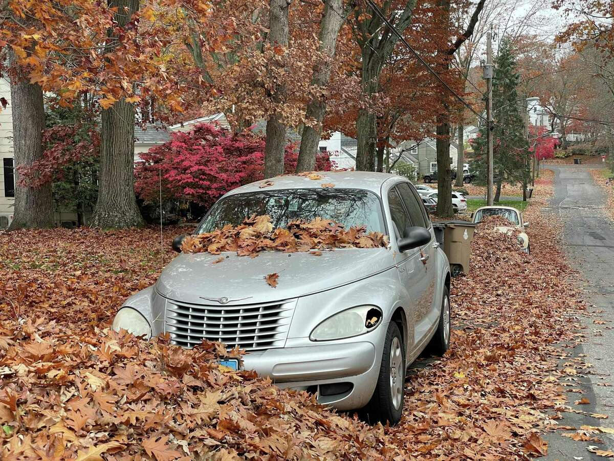 """Leaf piles begin to bury cars parked on Woodbury Avenue on Nov. 11. Mayor David Martin said the leaf pickup operation could get """"complicated"""" this year because of budget cuts that resulted in layoffs in the highways department and a COVID-19 spike that could further deplete the staff."""
