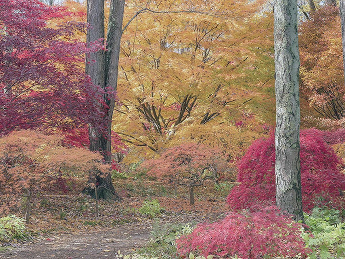 """This photo provided by The Monacelli Press shows a garden featured in the book """"Garden Portraits: Experiences of Natural Beauty,"""" by Larry Lederman. (Larry Lederman/The Monacelli Press via AP)"""