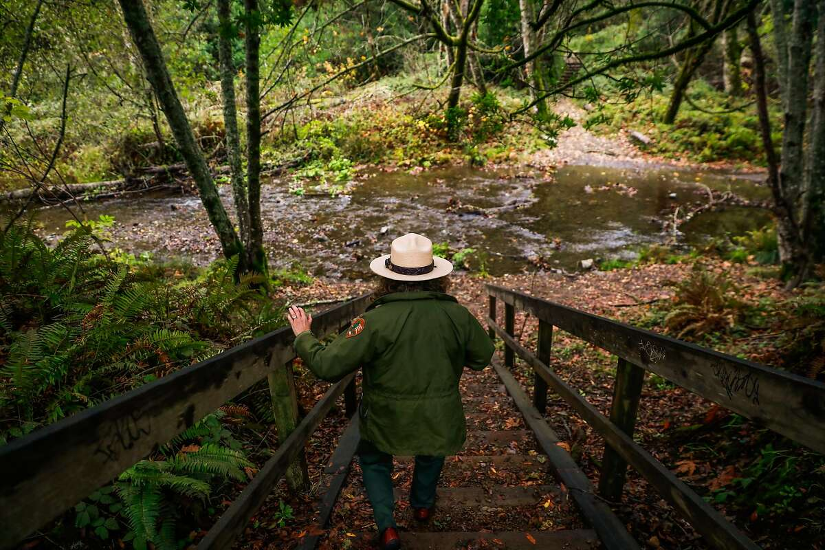 Park Ranger Mia Monroe walks down to the Dipsea Trail in Muir Woods, where the Golden Gate National Parks Conservancy runs the visitor center.