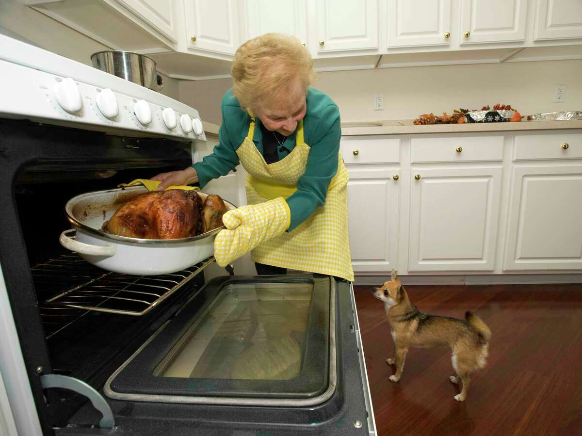 Be careful if you have hot food around a pet. One small spill could cause a bad burn.