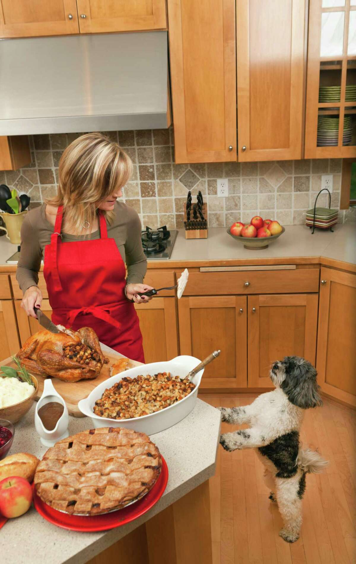 Don't leave food out where your pet can get to it. And if you must, lock your pet in another room.