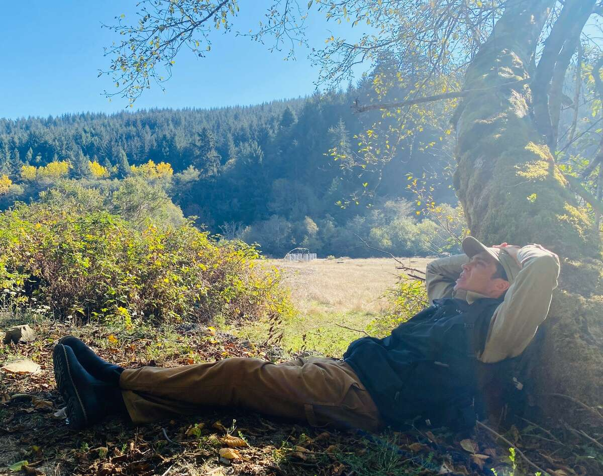 Forest bathing guide Justin Legge helps people slow down and appreciate nature in a new way.