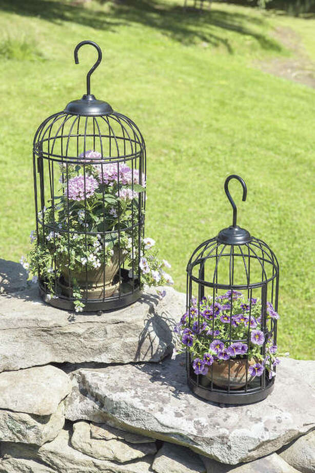 Bird cage planters add whimsy to any indoor decor while providing a unique place to display air plants, seasonal plants and more. Photo: Gardener's Supply Co.