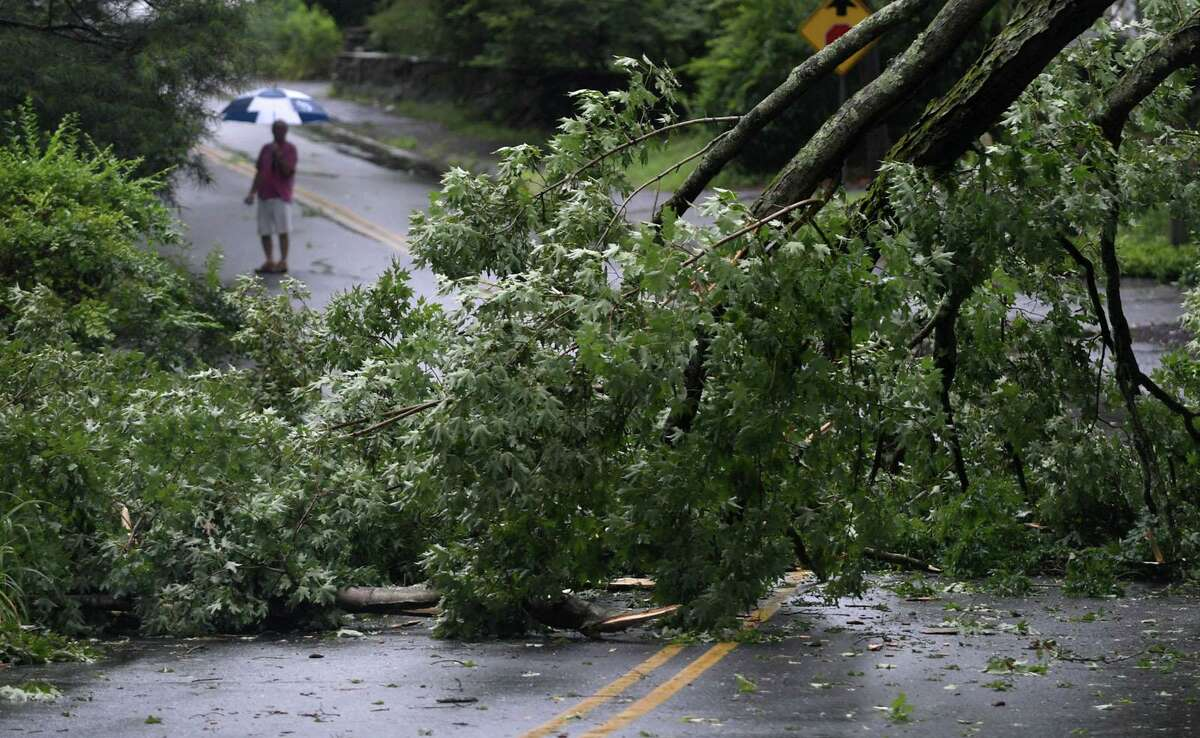A tree limb blocks Perry Ave while wind gusted up to 70 miles per hour tearing down trees throughout the city as Tropical storm Isaias brings heavy rain Tuesday, August 4, 2020, to Norwalk, Conn.