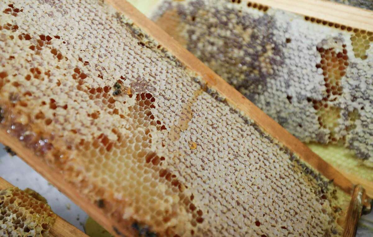Honeycomb is seen at The Honey House, a small business that sell blends of honey and jams in Conroe.
