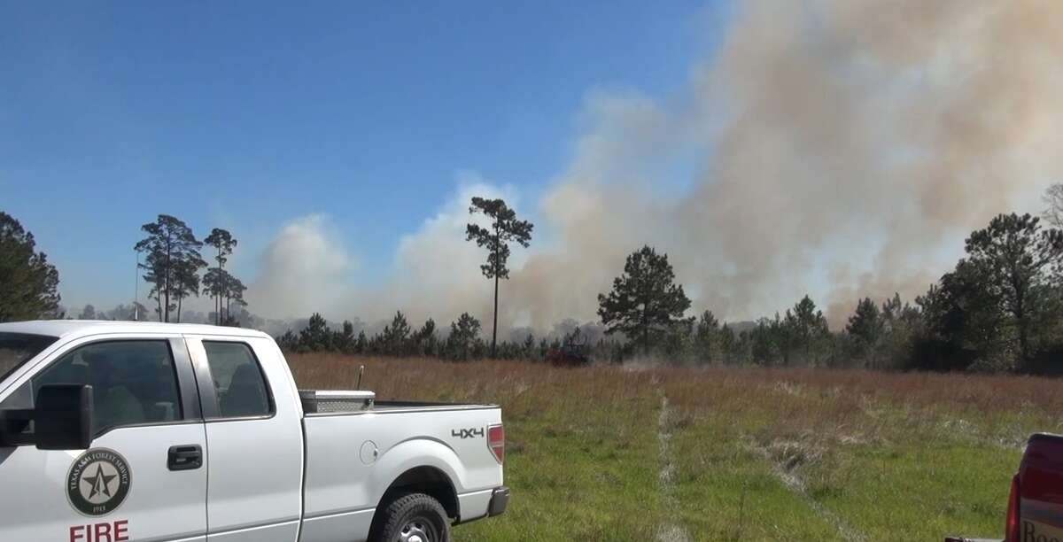 Scene from a wildefire burning in Liberty County on Monday, Nov. 16, 2020.