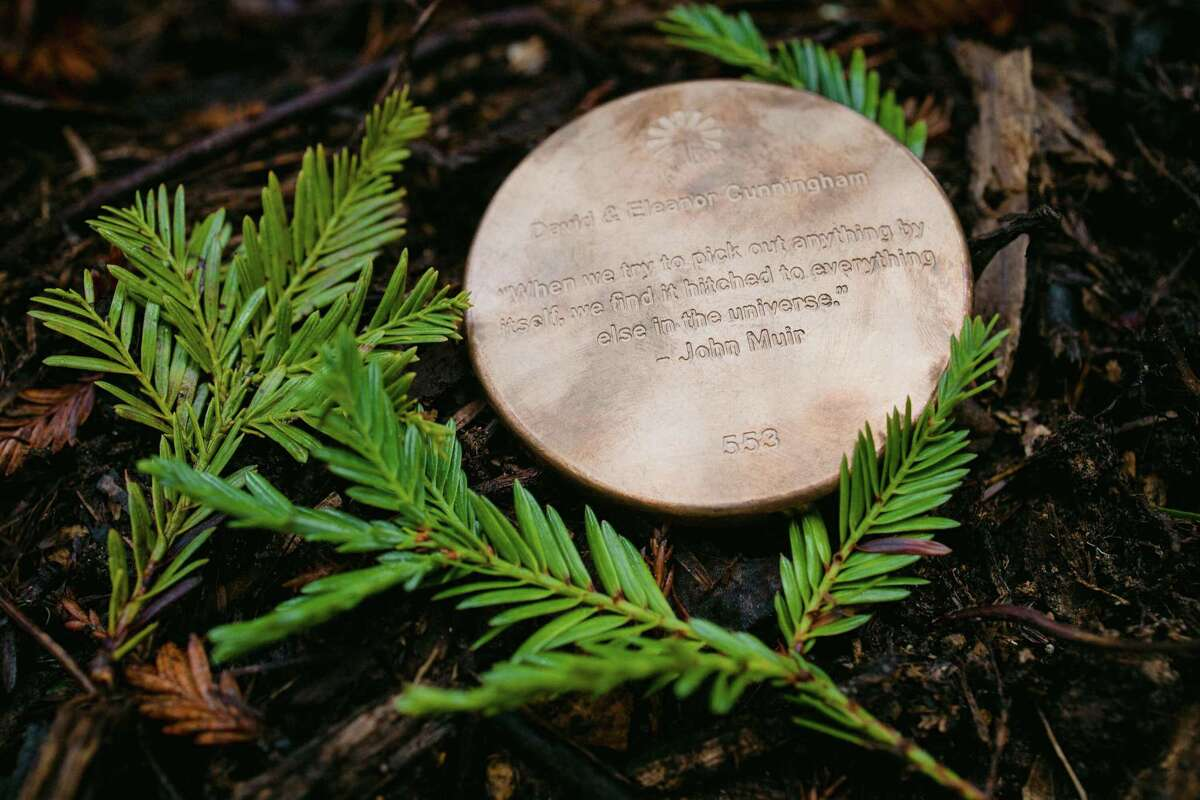 Better Place Forests, a California-based company that offers families an alternative memorial burial place for their loved ones, recently expanded to Falls Village with a 130-acre forest area. Above, a memorial marker under a chosen tree.