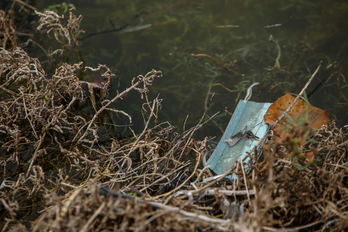 A surgical mask floats in Damon Slough on Wednesday in Oakland.