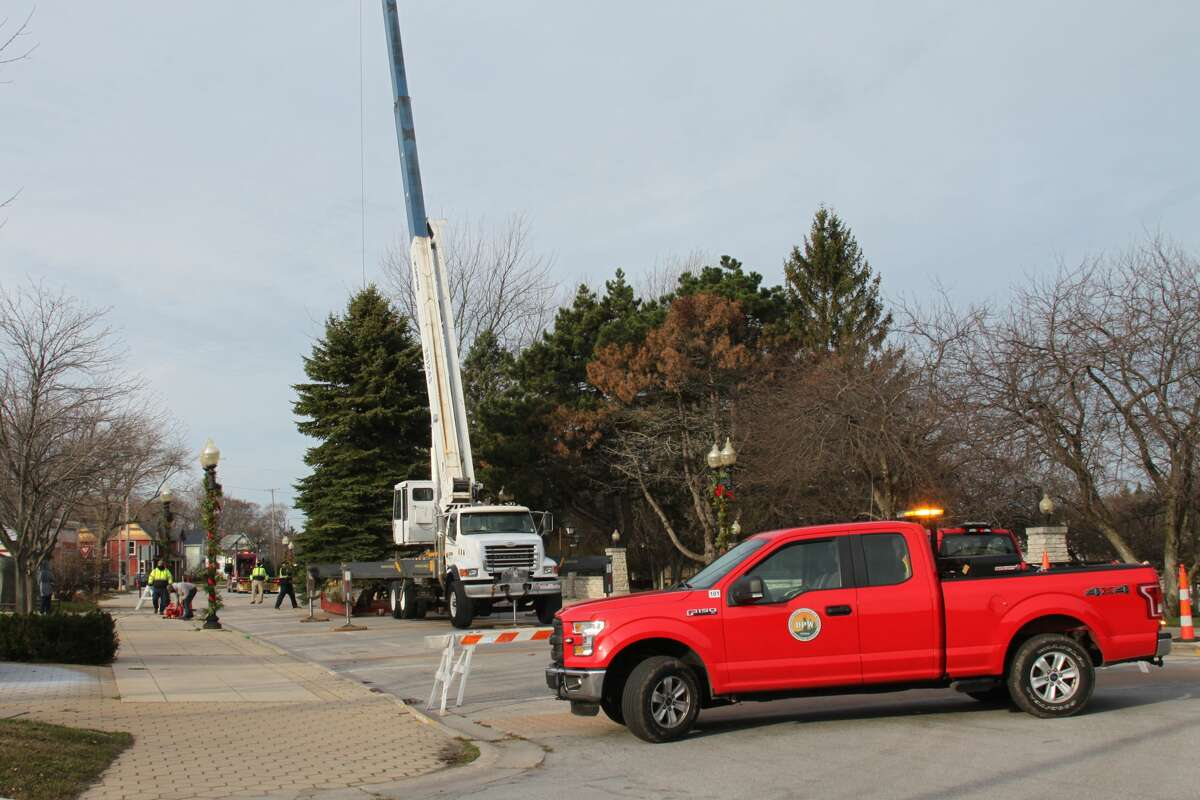 The Department of Public Works erected Manistee's 2020 Christmas tree near the the Marina Building on Thursday.