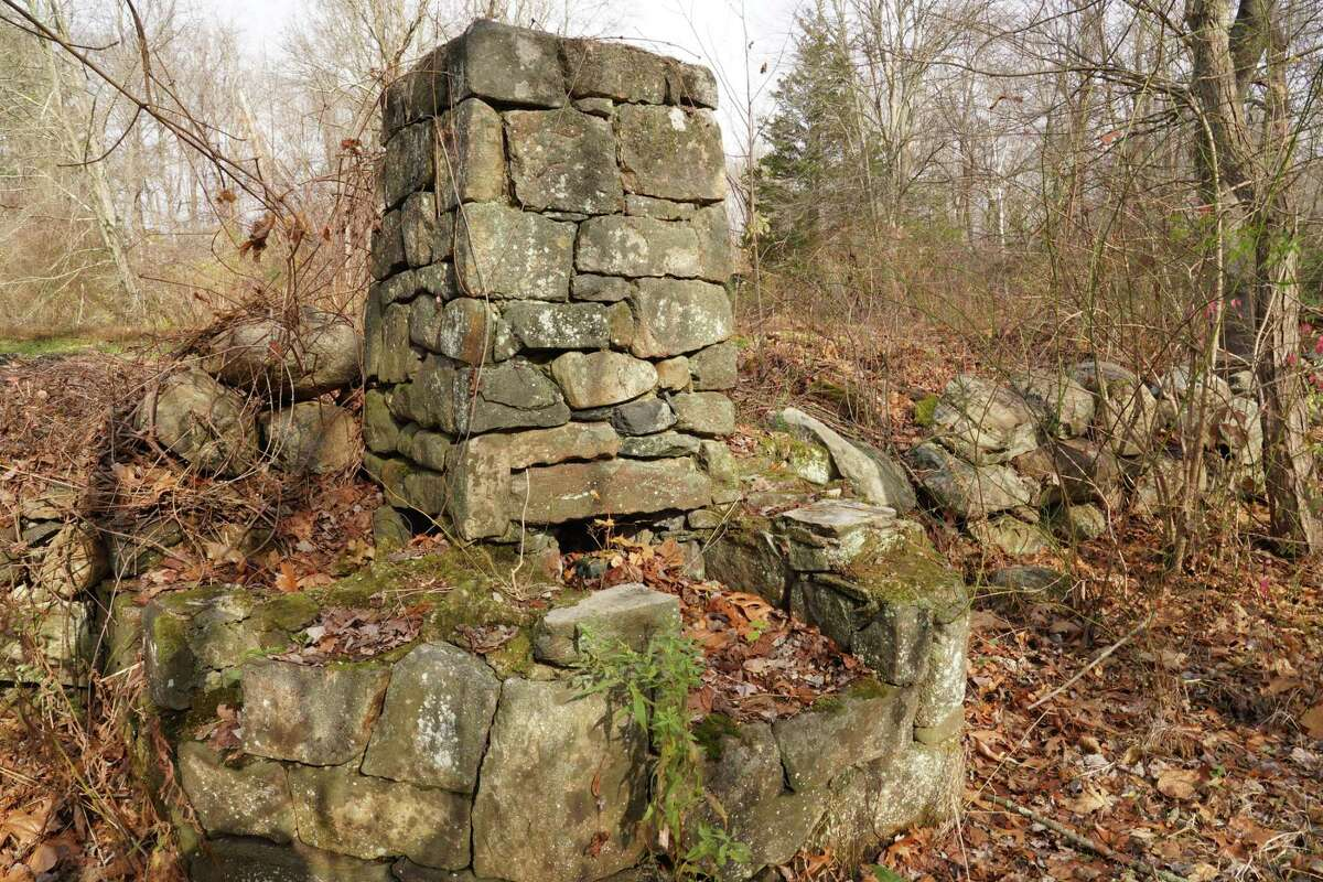 The chimney near the marsh pond at the New Canaan Nature Center is mentioned in the 84-page report on how to improve the vegetation, animal habitats and understanding of the 39-acre park on 144 Oenoke Ridge.