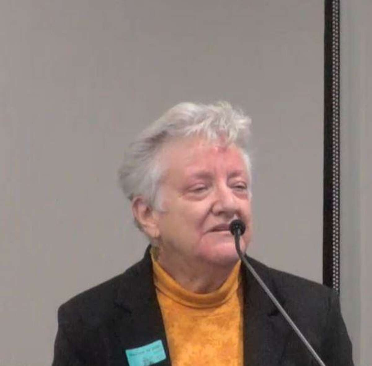 Mary Funderburg was one of four hopefuls for The Woodlands Township Development Standards Committee's two open seats.