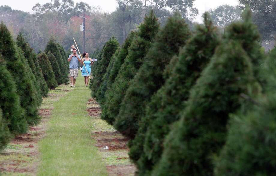 John Hilgert his son Sebastian Hilgert on his shoulders while shopping for christmas trees with his wife Alexis Hilgert right, at the Old Time Christmas Tree Farm in Spring. Photo: James Nielsen, Staff / Chronicle / © Houston Chronicle 2012