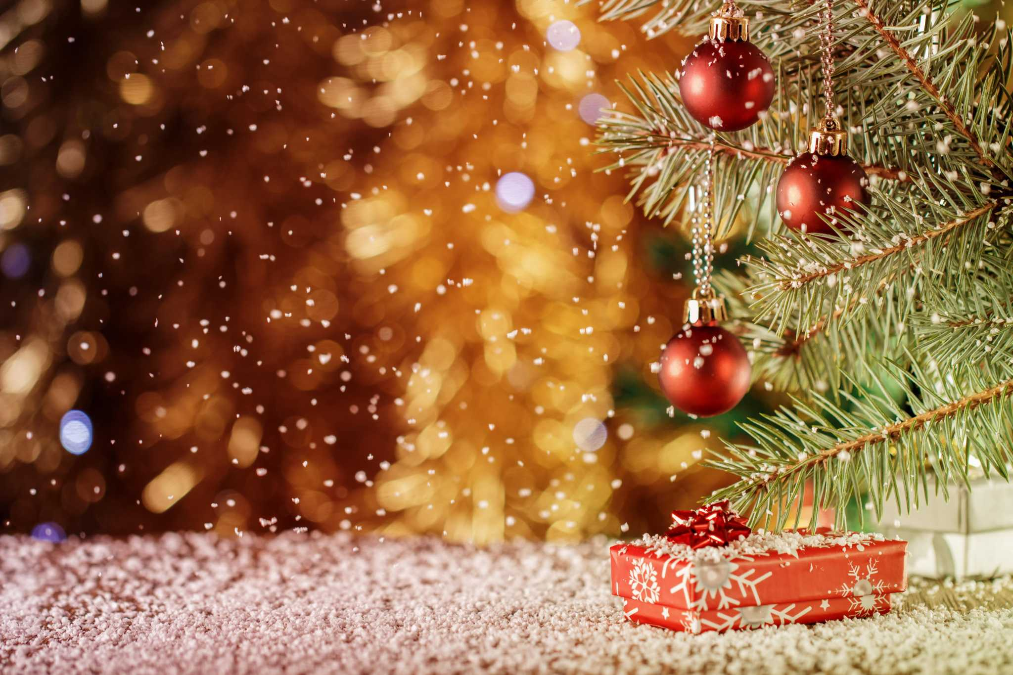 Calvin Finch: Your guide to living Christmas trees that can be planted in San Antonio gardens ...