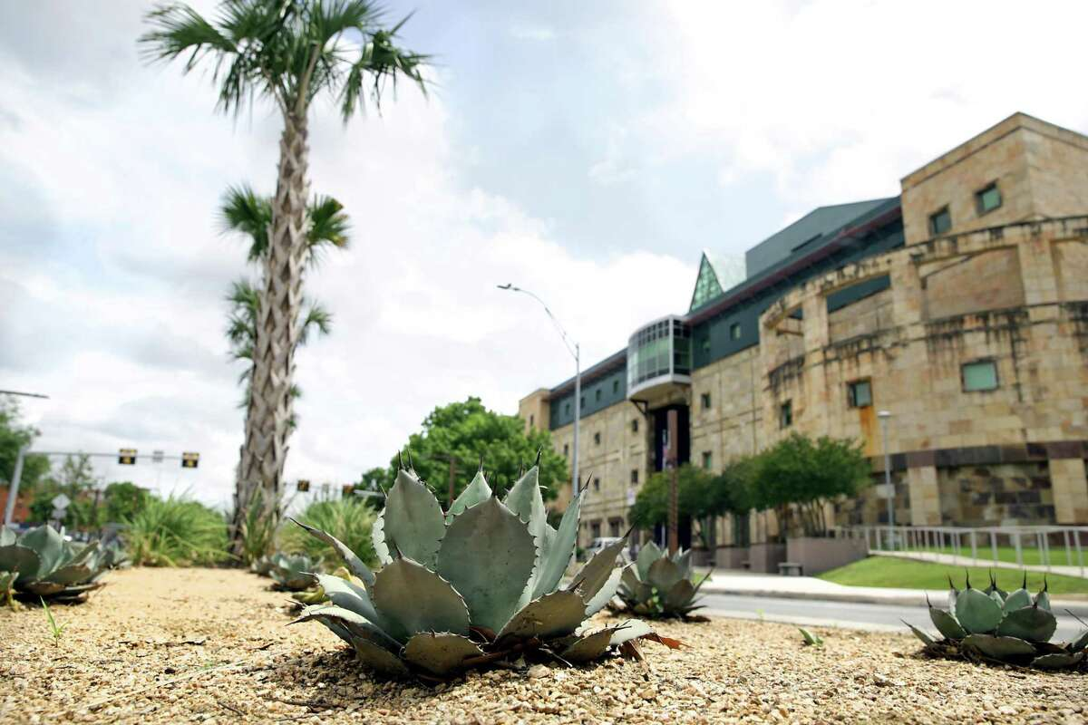 Cacti, palms and other native plants adorn the median of the remodeled Frio Street at the UTSA downtown campus. CyManII will be located on the downtown campus.