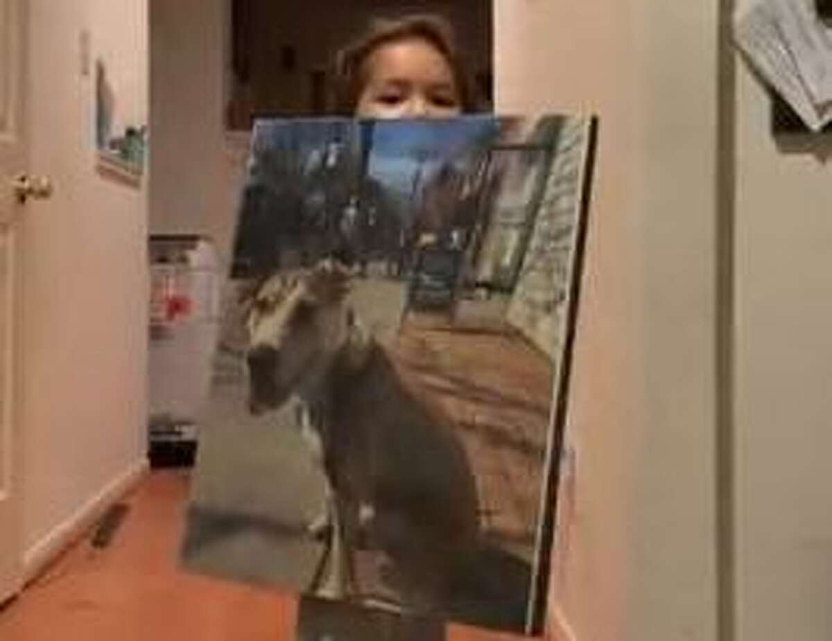 William Gibbons' 3-year-old daughter, Elizabeth, shows off a canvas photo of her dog that doubles as bulletproof protective gear.