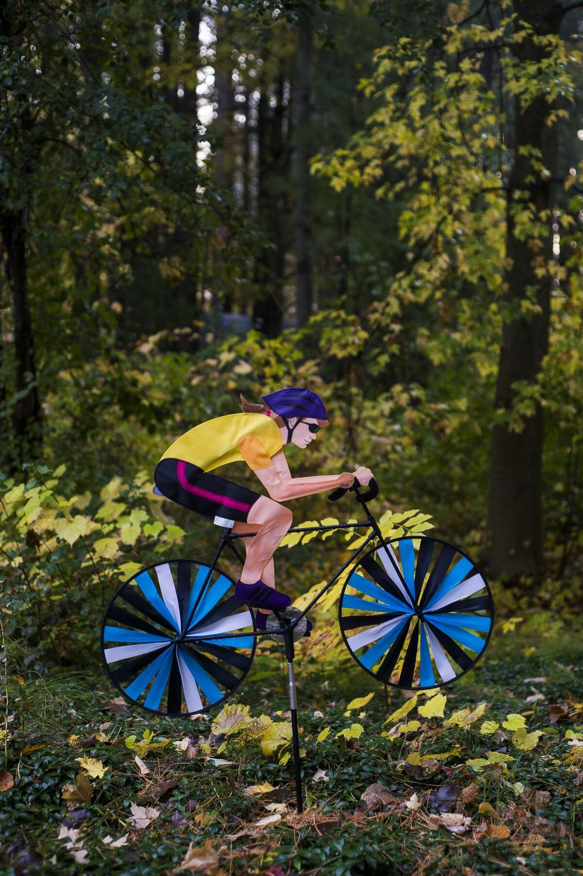 8:17 a.m. - A wind spinner is seen in the front yard of Sanford Village President Dolores Porte at her home on Monday, Oct. 19, 2020. (Katy Kildee/kkildee@mdn.net)