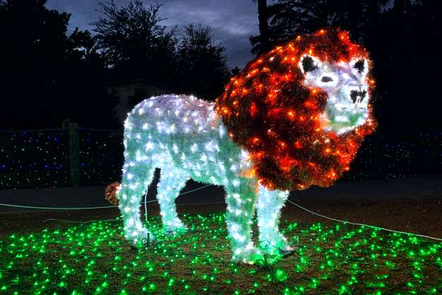 San Antonio Zoo (included with standard zoo admission): The annual Whataburger Zoo Lights will be on display from Nov. 20 through Jan. 3. During its stint, there will be a Santa Claus for socially distanced photos and camel rides. Standard admission tickets start at $21.99 for adults and $18.99 for children ages 3-11. The San Antonio Zoo is located at 3903 N. St. Mary's St. Photo: San Antonio Zoo