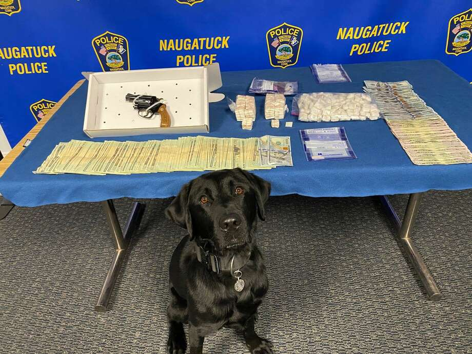 K-9 Judge with items seized during a search of two Naugatuck, Conn., residences on Nov. 12, 2020. Photo: Naugatuck Police Department / Contributed Photo