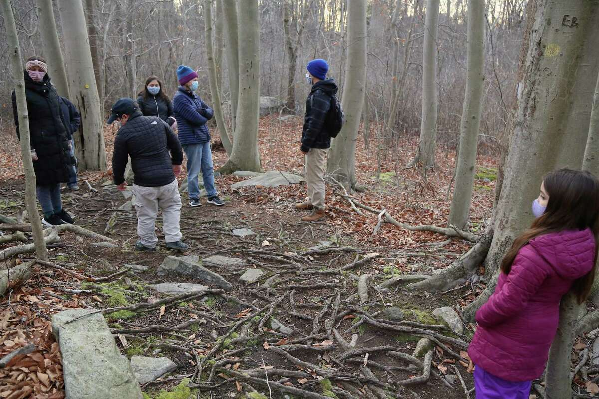 Environmental Educator Sam Nunes shares about a little area known as Beech Grove, which features unique trees that have very delicate bark but also the ability to communicate with one another through their roots and the earth.