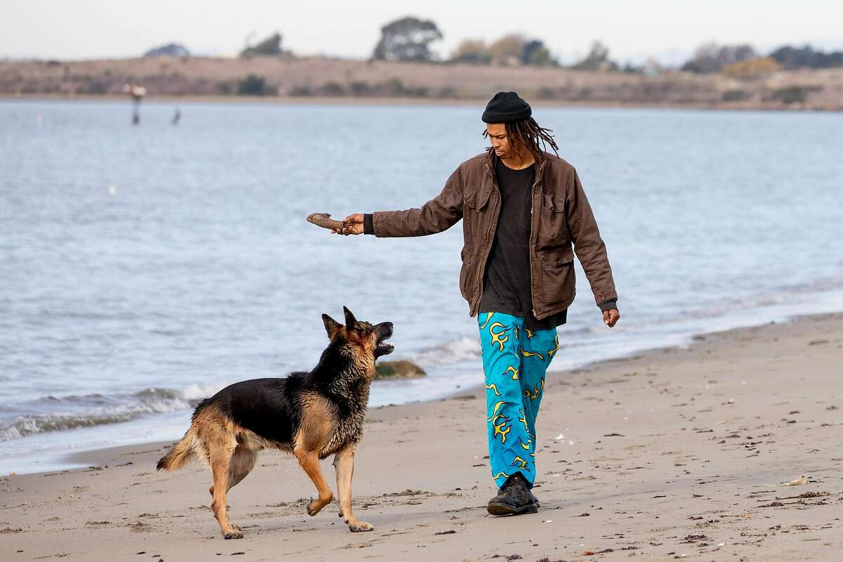 A man and his dog take advantage of the sunny skies with a walk along Frontage Road in Emeryville.