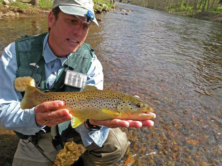 John Field holds a female brown trout he caught on the Farmington River in the summer of 2009. Photo: Contributed Photo / Westport News