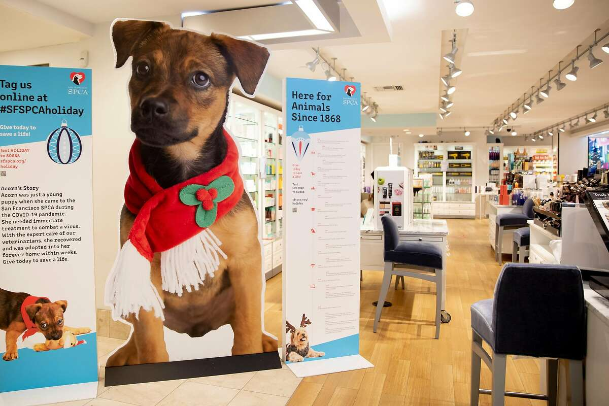 A large puppy cutout from the SF SPCA promoting pet adoptions is displayed in the cosmetics department at Macy's.