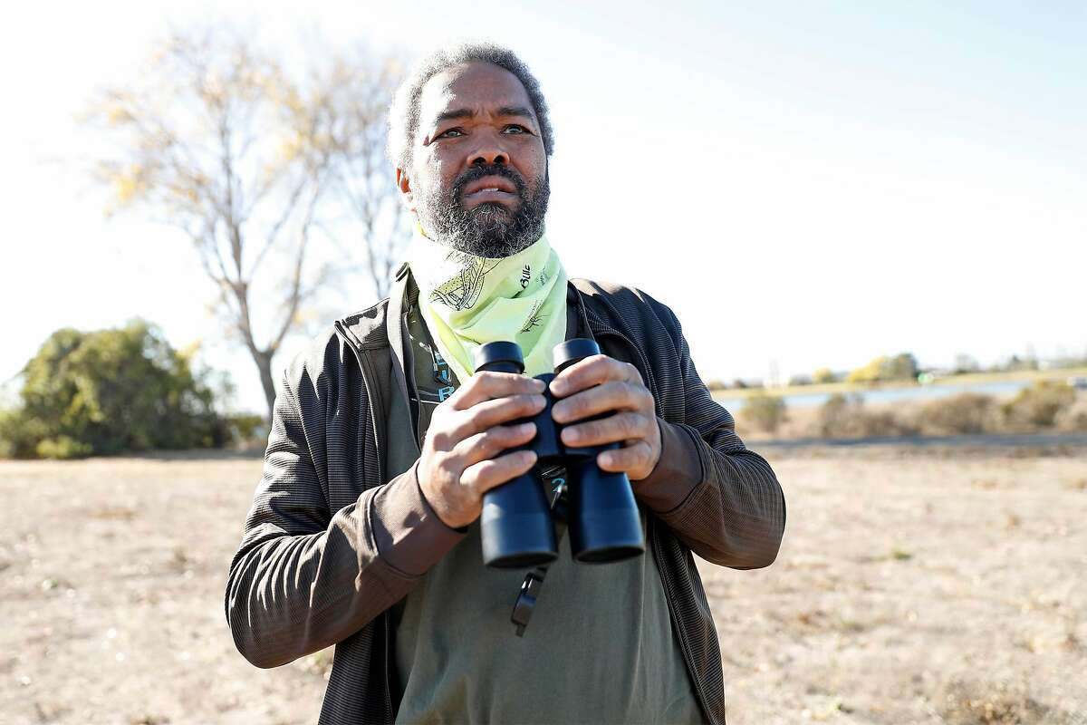 Birder Clay Anderson looks for white crowned sparrows at MLK Regional Shoreline in Oakland, Calif., on Wednesday, November 25, 2020. Researchers think white crowned sparrows, a common city bird, have started singing more complex songs in response to quieter streets and less traffic during the pandemic.
